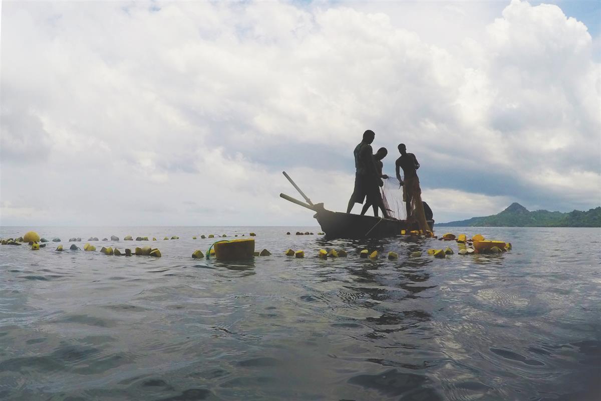 Unsustainable Fishing Practices, Bahia das Agulhas, Principe