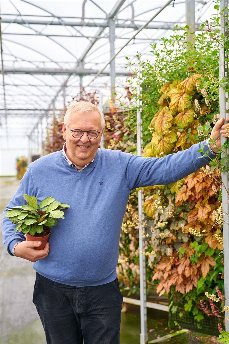 Floriestoire de [N]Denis-Plants[/N]