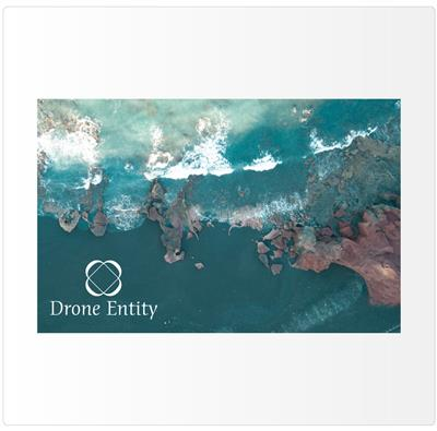 Drone Entity Business Card