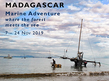 Marine Group Travel 2019 NW Madagascar