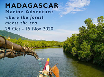 Marine Group Travel 2020 NW Madagascar