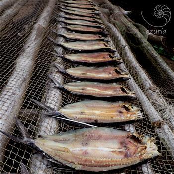 driedfish