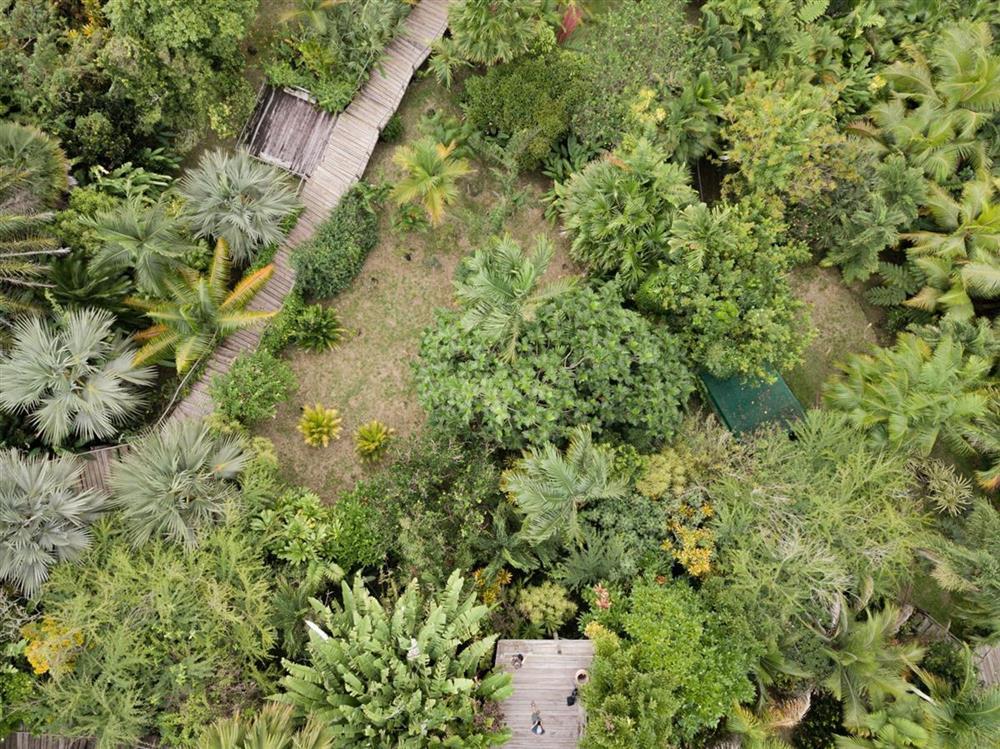 Flora Tropical Garden