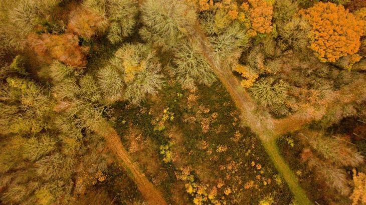 Herfst - Landschappen