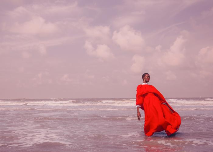 le vif zee